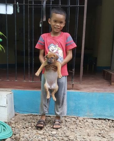 The children love their little puppy!