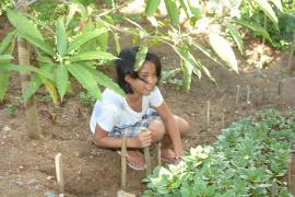 Our garden provides some fruit and vegetables. The children help.